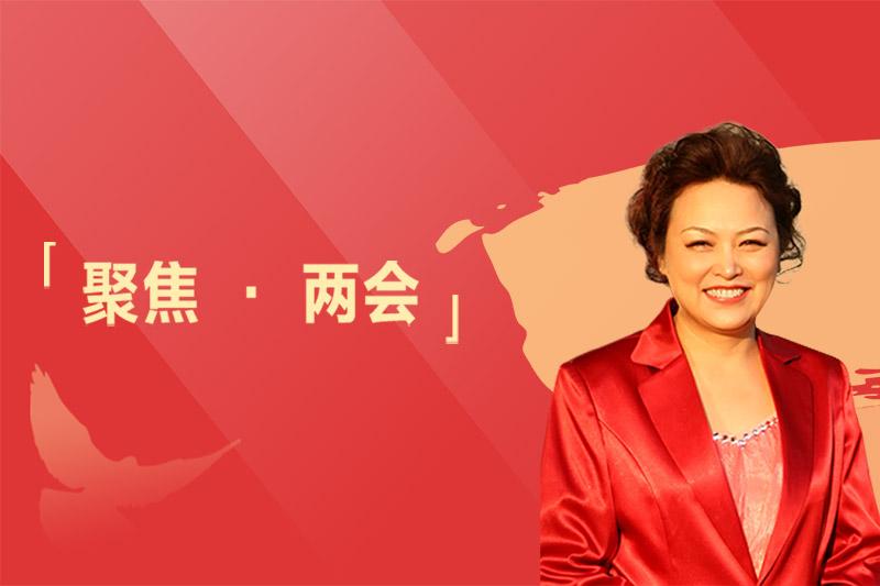 全国人大代表王凤英两会建言:关注中国汽车的全球化、智能化、新能源发展
