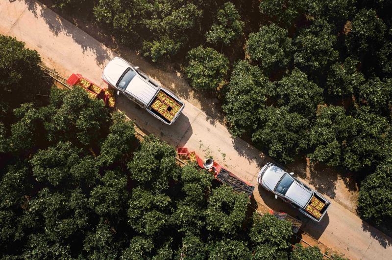 长城汽车2020年度企业社会责任报告:科技创新助力节能减排 构筑绿色产业链生态