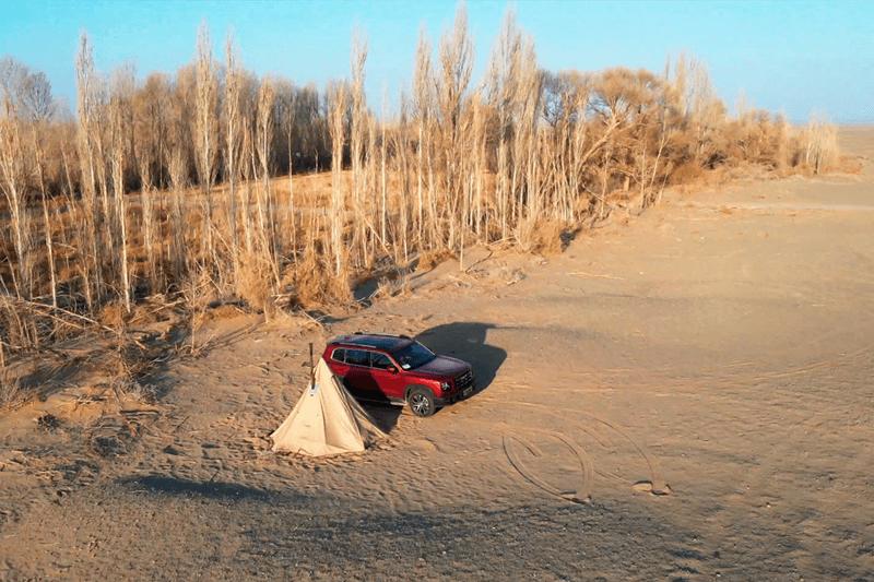 「寻境之旅-田间绿岛」川西平原的特有民居--竹林盘