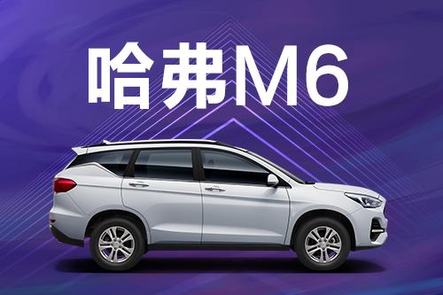 当哈弗M6原装车零部件质量担保期限小于零部件续保期限时,怎样计保?